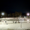 A Winter Treasure: The Boyd Park Skating Rink